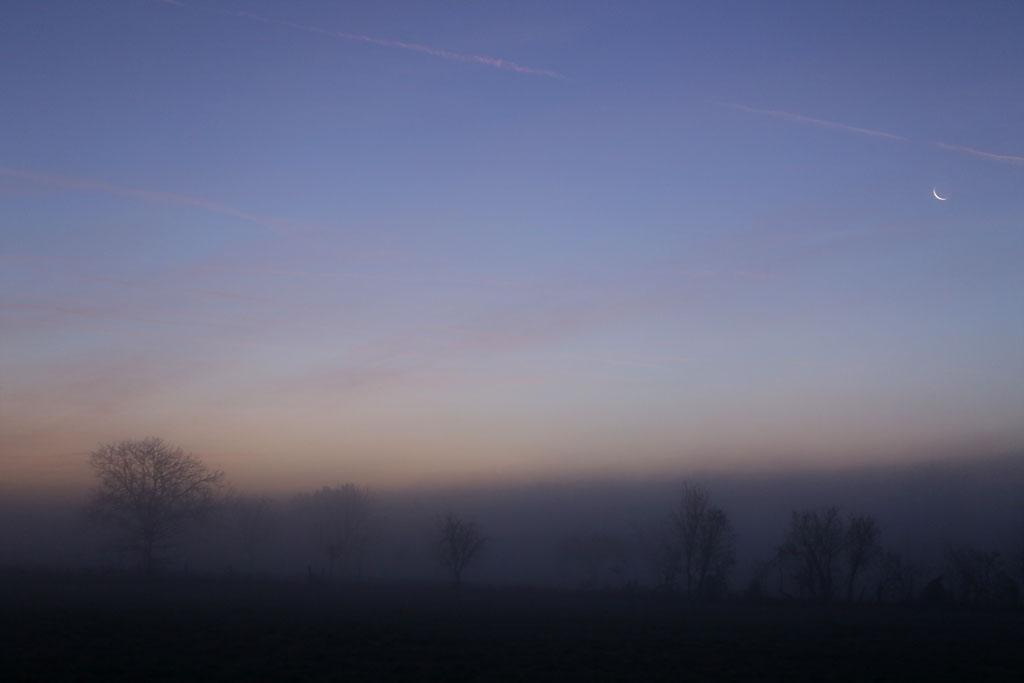 Ambiance matinale... Lune1